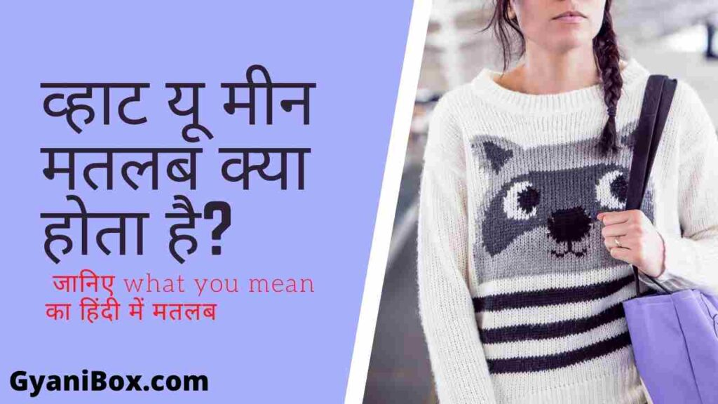 What you mean meaning in hindi